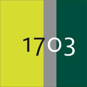 1703_Jaune HV / vert bouteille